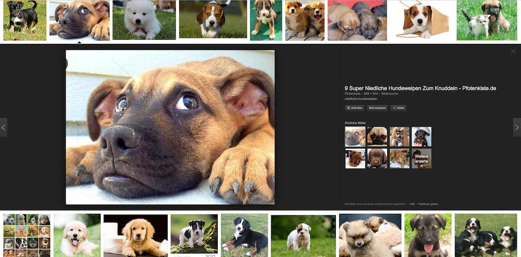 Bilder-SEO-Google-Bildersuche