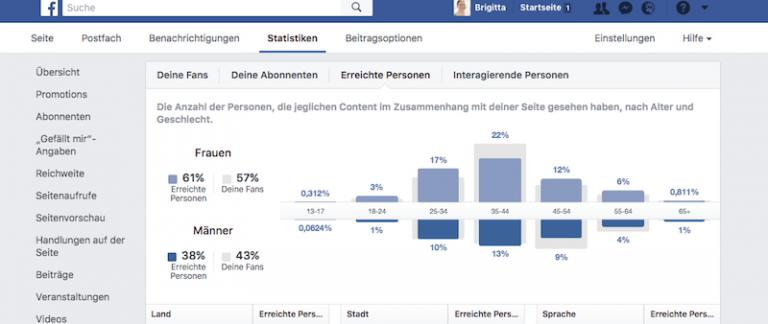 Zielgruppenanalyse/ Ansicht einer Statistik-Seite auf Facebook - Screenshot