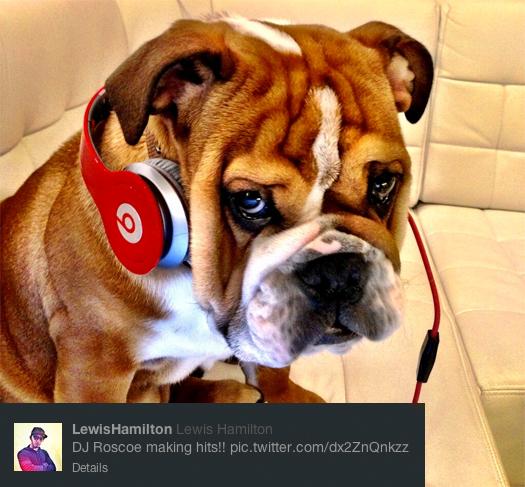 Twitter-Foto Lewis Hamilton Formel 1 Saison Start 2013 Hund Kopfhörer DJ